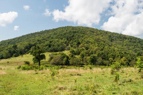 Little Bearwallow Mountain on Wildcat Rock Trail