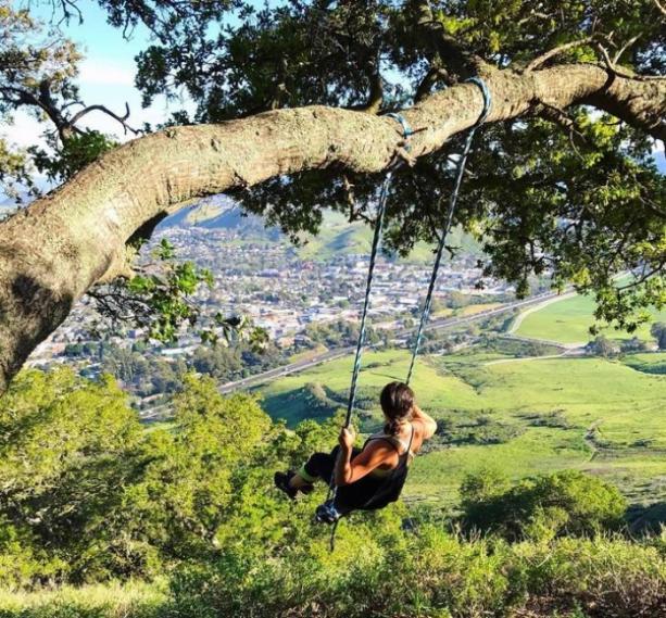 Women swinging on a tree branch