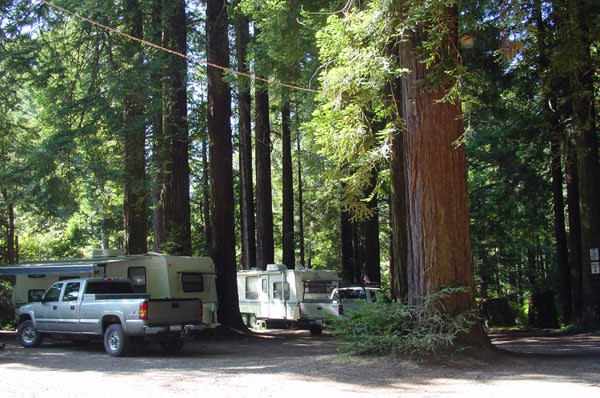 Camping on the redwood coast for Cabine eureka ca