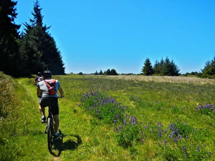 Bike Rides In Humboldt County