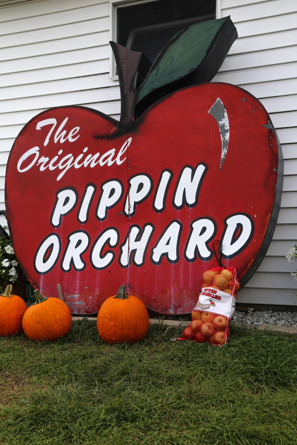 Image result for pippin orchard cranston ri