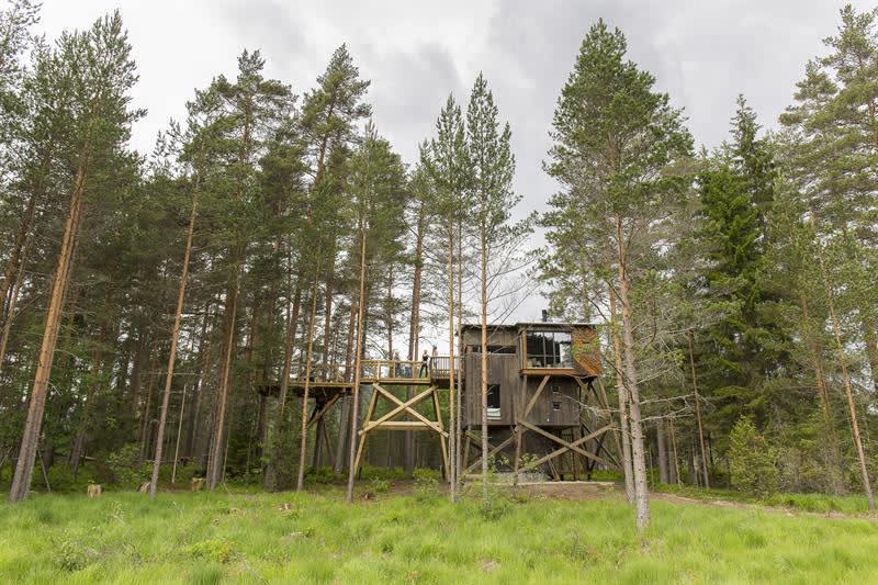 High Quality Kråkeslottet Trehyttene I Gjerstad Hytte