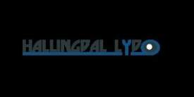 Hallingdal Lyd - logo