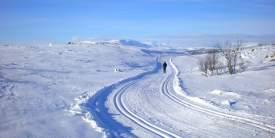Sangfjell-Ål-Ski