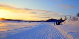 Ål-Vinter-Langrenn