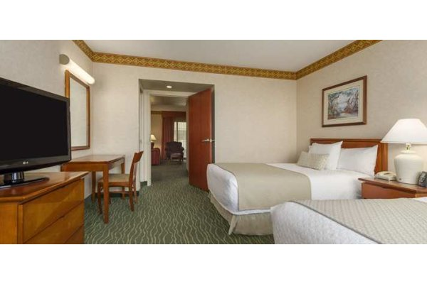 Embassy Suites Tampa Busch Gardens Hotels 2 Beds.jpg