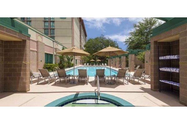 Embassy Suites Tampa Hotel near Busch Gardens Pool.jpg