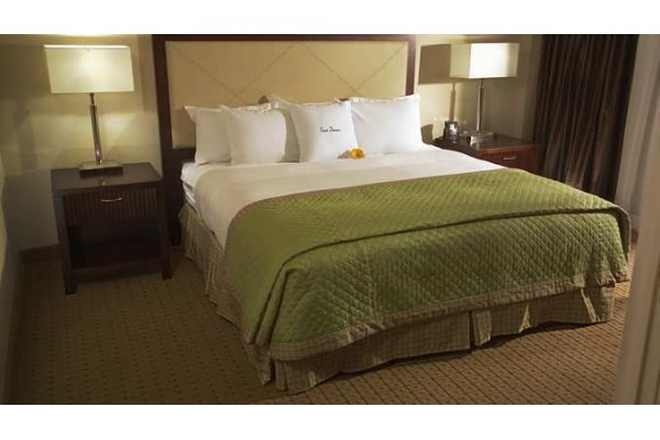 Hotel in Tampa King Room.jpg