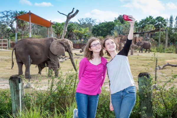 Girls With Elephant