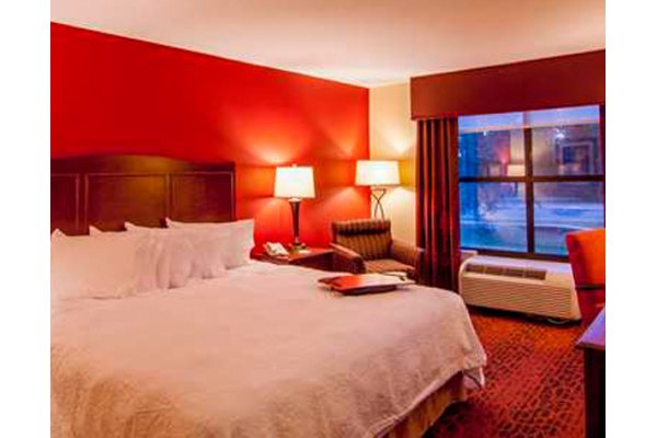 King Room Hampton Inn & Suites Tampa North Hotel