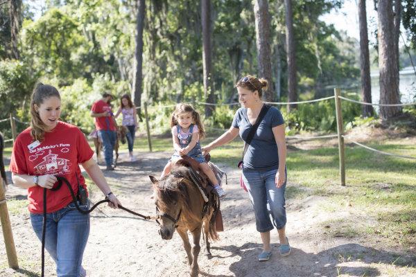 Pony Rides at Old McMicky's Farm