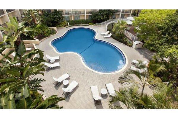 Tampa Airport Hotels Swimming Pool.jpg