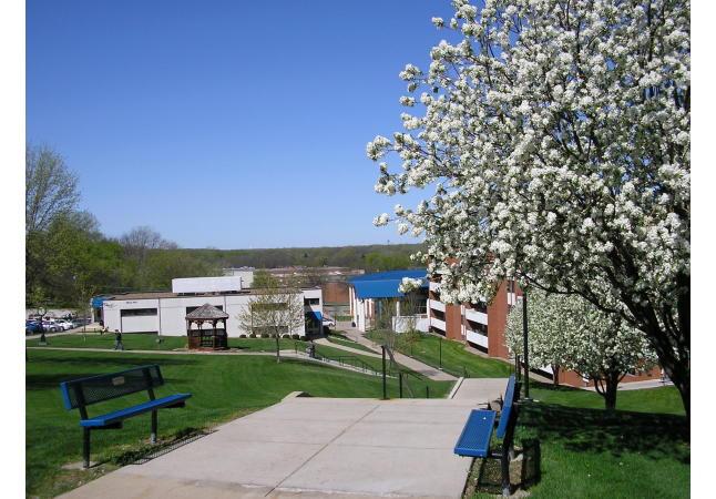 Spring Fenton Hall