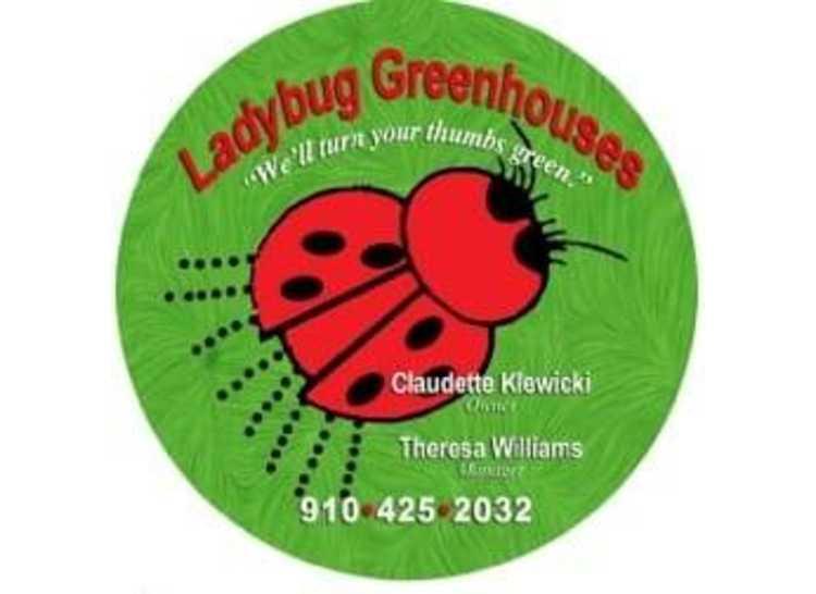 Lady Greenhouses