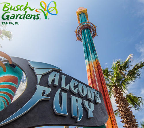 Discounts on Top Attractions with the Tampa Bay CityPASS