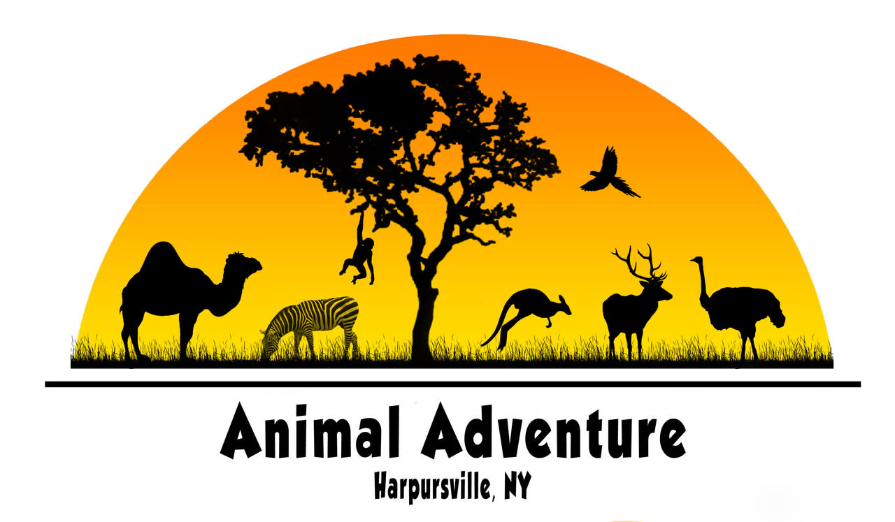 Animal Adventure Park Harpursville Ny 13787