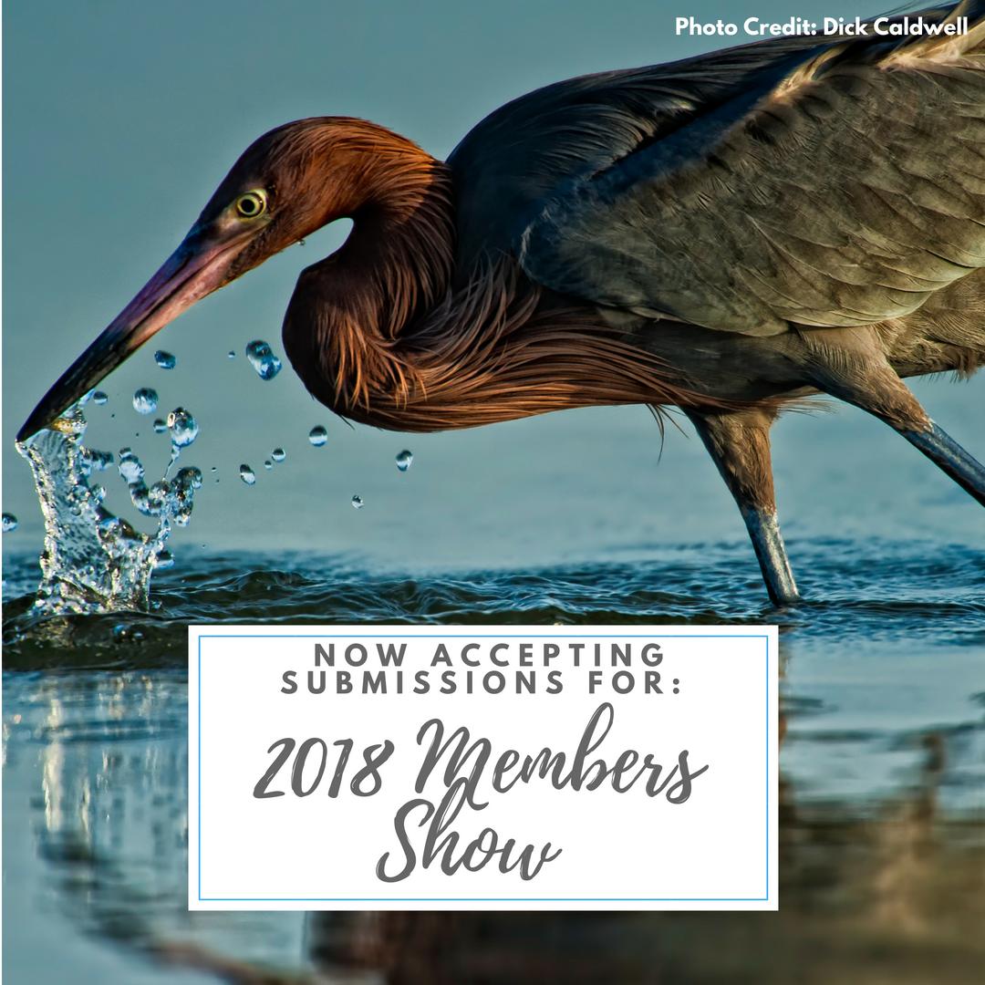 FMoPA 2018 Members Show
