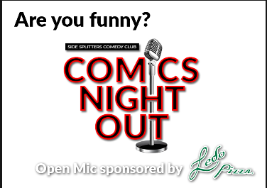 Are You Funny?  Comics Night Out