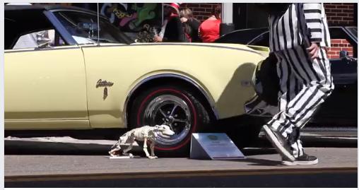 7th Annual FantasmaFest | Hell on Wheels Classic Car Show