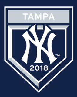 Spring Training - NY Yankees vs Detroit Tigers