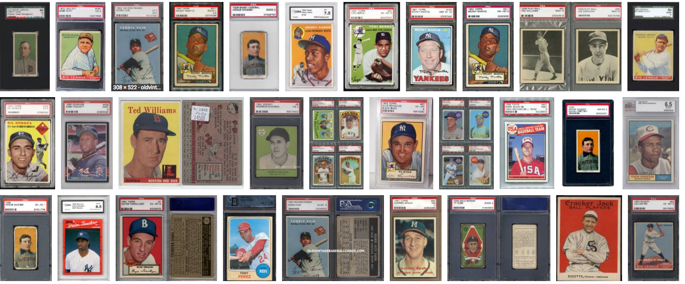 Tampa Sports Card and Collectible Show