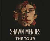Shawn Mendes: The Tour