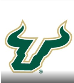 USF Men's Soccer vs. FGCU