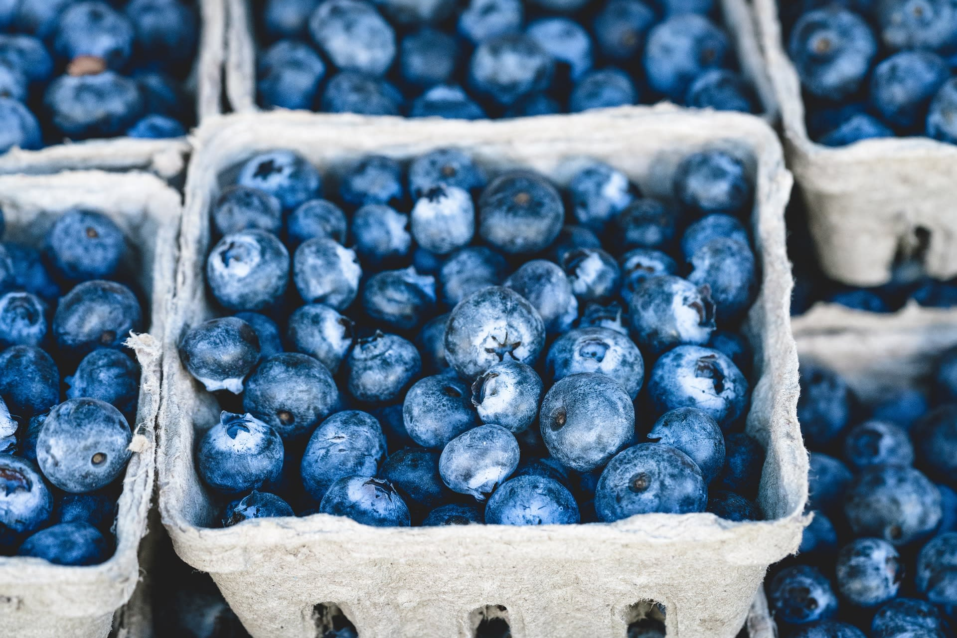 11th Annual Blueberry Festival at Keel & Curley