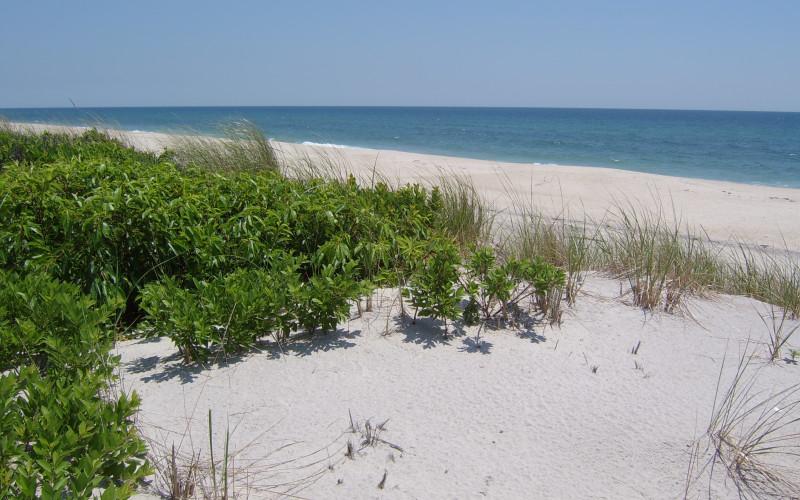 Beach 600 Feet On The Ocean Nonresident Fee