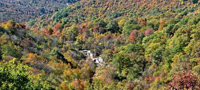 Fall Color Report 10/13
