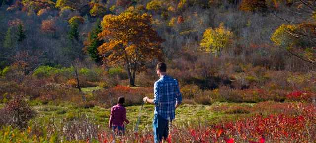 Graveyard Fields in Fall