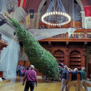 Biltmore Welcomes 35-Foot Christmas Tree