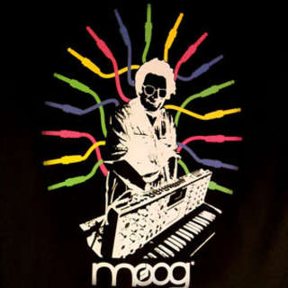 The Countdown is on to Moogfest