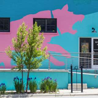Pink Dog Creative, River Arts District