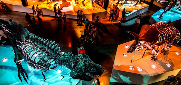 Great Value: the Houston Museum Pass. 1-day, 3-day, 30-day options.