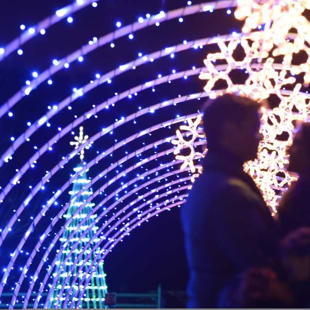 Top 8 Places To See Holiday Lights In Asheville Nc