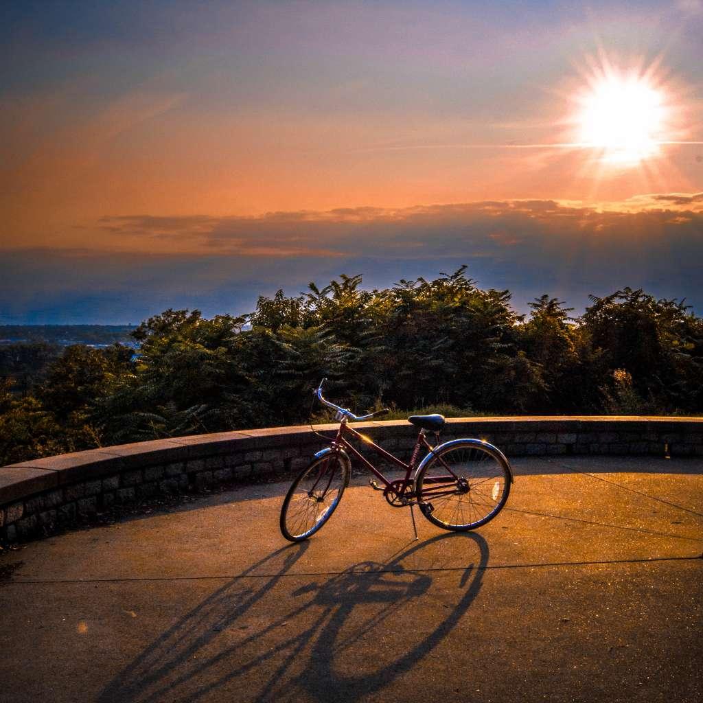 Bike and Shador