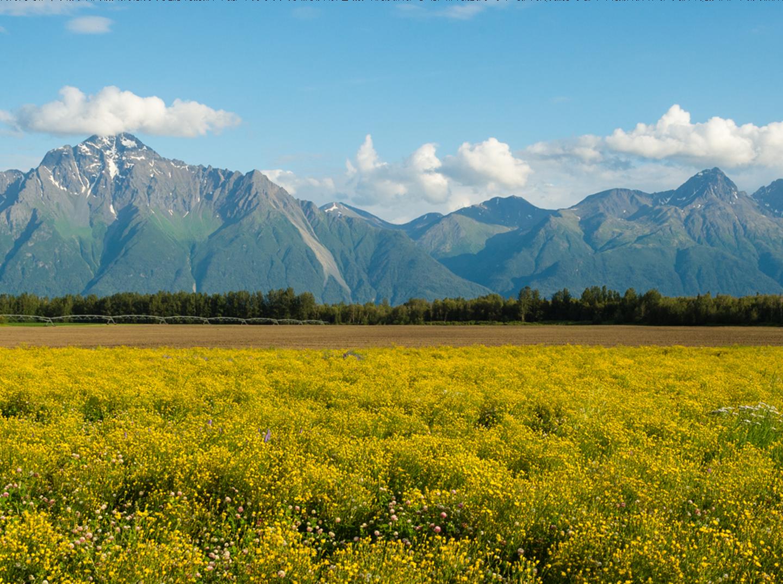 Alaska matanuska susitna county skwentna - Pioneer Peak