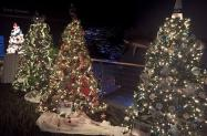 Cape Fear Festival of Trees