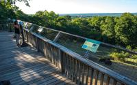 Utica Zoo 531