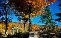 Mountain Top Arboretum 813