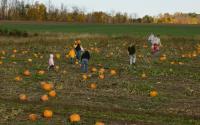 Cobble Creek Farm 1055
