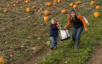 Cobble Creek Farm 1057