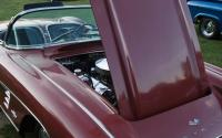 Weekly Car Show - Bear Mtn. State Park