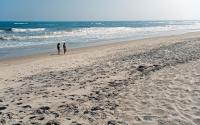 Fire Island National Seashore 1335