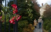 Planting Fields Arboretum & Coe Hall Mansion State Historic Park 1417