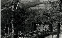 Old Indian Ladder Picture