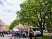 Rochester Lilac Festival Receives National Media Attention