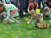 Celebrate Spring in Rochester and the Finger Lakes