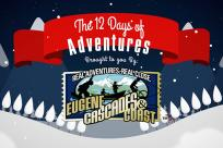 The 12 Days of Adventures